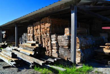Chauffage des coopératives forestières : comment ça marche ?