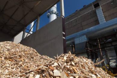 La meilleure prestation de broyage de bois pour les coopératives forestières