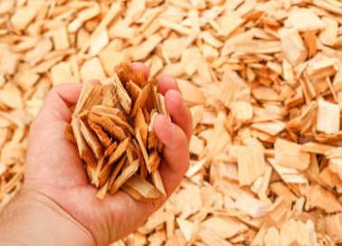 Pourquoi les collectivités locales ont tout intérêt à se chauffer avec des plaquettes forestières ?
